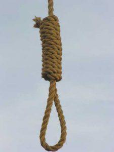 Noose
