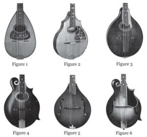 Mandolin styles